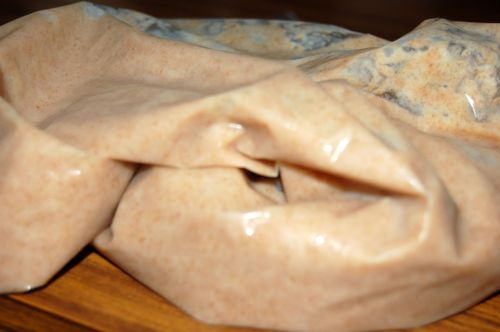 Amish friendship bread1